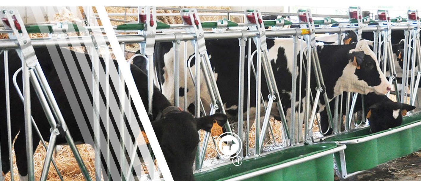 Panneau suédois monotube Jourdain matériel de sécurité et d'alimentation pour le bétail