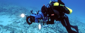 fond ocean pure ocean fund